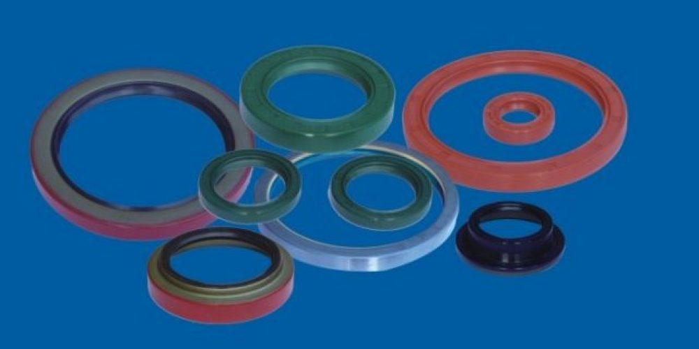 Oil Seals / Rotary Shaft Seals